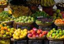 Exportar frutas y verduras a Estados Unidos: El papel de la refrigeración