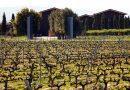"""Terras Gauda presenta su primer Rioja de crianza con la nueva imagen de marca """"Heraclio Alfaro"""""""