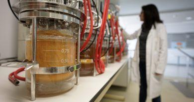 AINIA desarrolla biofactorías de microorganismos para obtener sustancias industriales más sostenibles