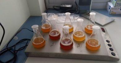 Método de análisis preciso de los compuestos olorosos de la cerveza